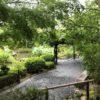 夏の日本庭園